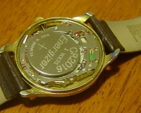 Timex Quartz Movement